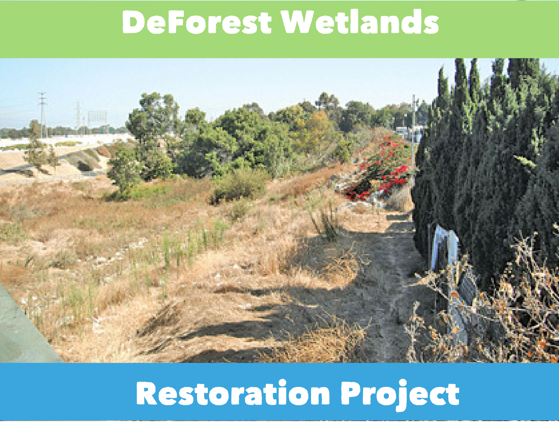 DeForest Wetlands Restoration Project