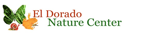 Nature Center Web Banner